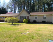 213 Meadow Ln, Oneonta image