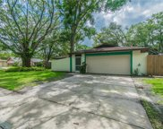 13902 Glover Place, Tampa image