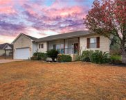 22338 Briarcliff Dr, Spicewood image
