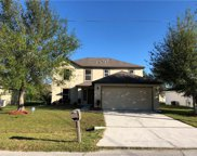 1107 Roan Court, Kissimmee image
