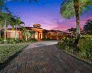 11452 Savannah Lakes Drive, Parrish image