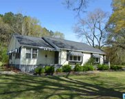 6504 Old Springville Rd, Pinson image