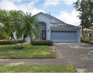 15833 Pine Lily Court, Clermont image