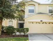 10717 Pictorial Park Drive, Tampa image