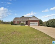 466 Co Rd 432, Clanton image