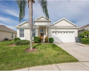 8140 Fan Palm Way, Kissimmee image