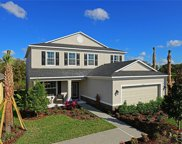 7828 Red Hickory Place, Riverview image