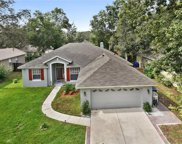 2743 Tall Maple Loop, Ocoee image