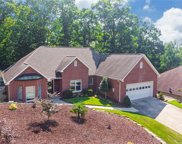 747 Monticello  Drive, Fort Mill image