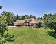 9241 Nightingale Road, Weeki Wachee image