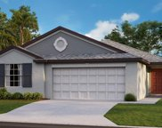 13532 Wild Ginger Street, Riverview image
