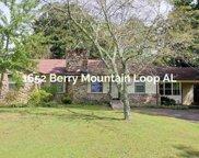 1652 Berry Mtn Loop, Blountsville image