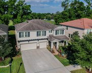 323 Parsons Woods Drive, Seffner image