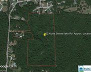 8346 Serene Lake Rd Unit 22 Acres, Mccalla image