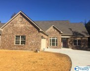 4304 Ruby Pointe Drive, Decatur image