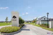 65 Cedar Grove Way, Prairieville image