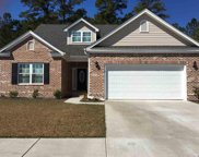3112 Ivy Lea Drive, Conway image
