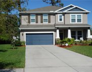 11860 Frost Aster Drive, Riverview image