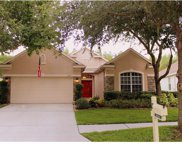 10224 Evergreen Hill Drive, Tampa image