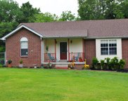 1009 Willowbank Ct, Ashland City image