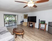 486 Orange Blossom, Irvine image
