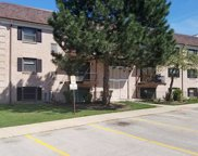 3325 Kirchoff Road Unit 3E, Rolling Meadows image