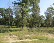 Lot 30 Willow Creek Ranch Rd, Gladewater image