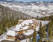 580 Packsaddle Trl, Evergreen image