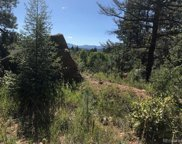 30929 Bear Cub Trail, Conifer image