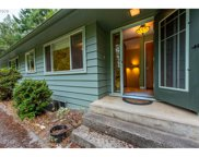 56673 PLEASANT HILL  DR, Coquille image