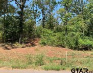 Tract 3 Moser Ln, Whitehouse image