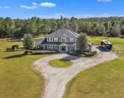 3110 FEED MILL RD, Green Cove Springs image