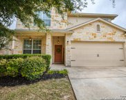 12310 Dewitt Way, San Antonio image