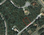 8 LOT PACKAGE Olive Circle, Ocala image