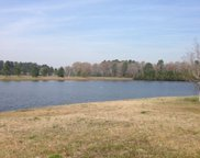 1030 MURRELET CT, Conway image