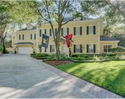 15100 Contoy Place, Tampa image