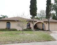 7800 Snapping Turtle Court, Hudson image