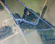 lot #9 545/FARMER ROAD, Loris image