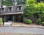 11710 Country Club Dr, Anderson Island image