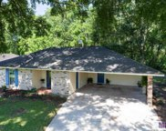 26331 Shadow Brook Ave, Denham Springs image