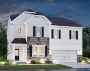 5209 American Holly, Ladson image
