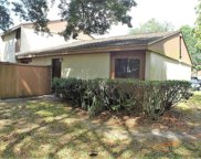 8611 Cattail Drive, Temple Terrace image