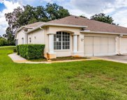 11637 Holly Ann Dr, New Port Richey image