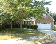 3703 Creek Valley Court, Buford image