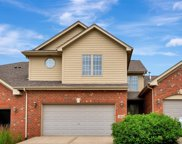 12516 Steamboat Springs Drive, Mokena image