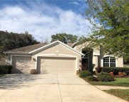 10118 Caraway Spice Avenue, Riverview image