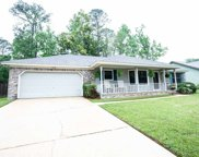 722 Riggins, Tallahassee image