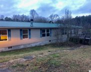 3817-A Clear Springs Rd, Mascot image