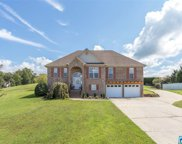 816 Mountain View Dr, Oneonta image