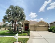 11707 Stonewood Gate Drive, Riverview image